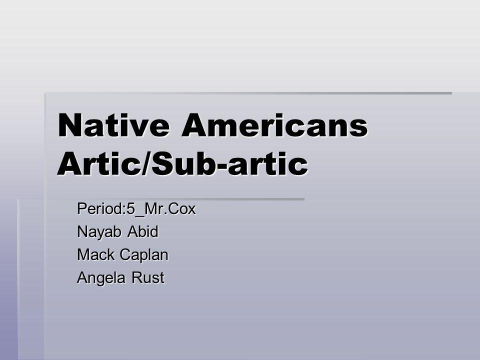 Tribes  Aleut  Alutiiq  Inuit (Eskimo)  Yupik  Alutila  Chippewa  Naskaql