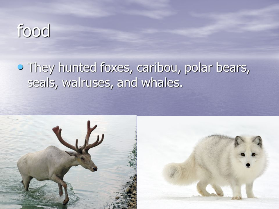 Dress In the winter they wore caribou skin In the winter they wore caribou skin In the summer they wore seal skin.