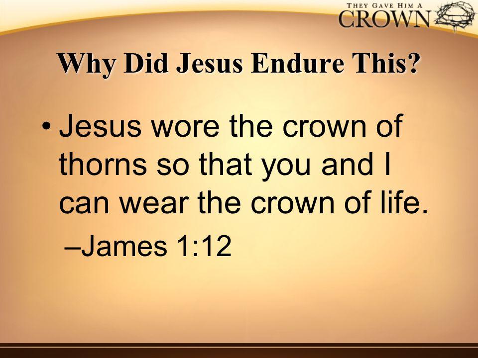 Why Did Jesus Endure This.