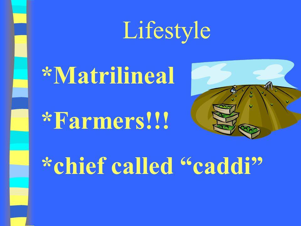 "Lifestyle *Matrilineal *Farmers!!! *chief called ""caddi"""