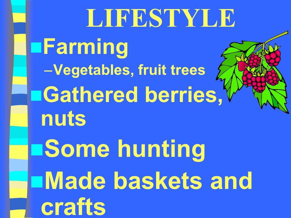 LIFESTYLE Farming –Vegetables, fruit trees Gathered berries, nuts Some hunting Made baskets and crafts