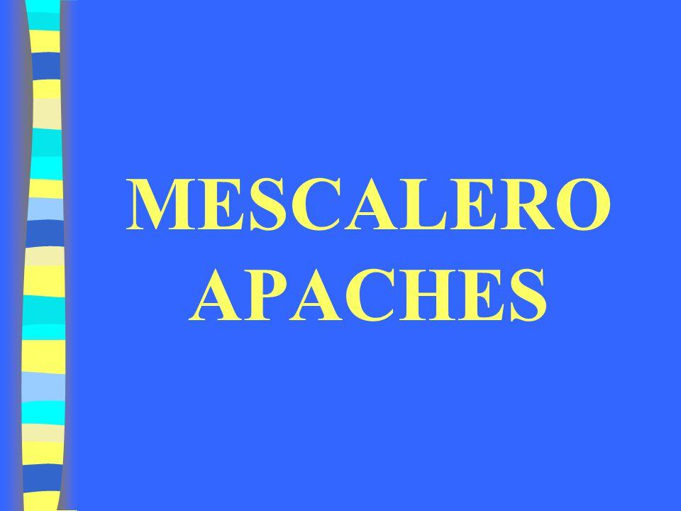 MESCALERO APACHES