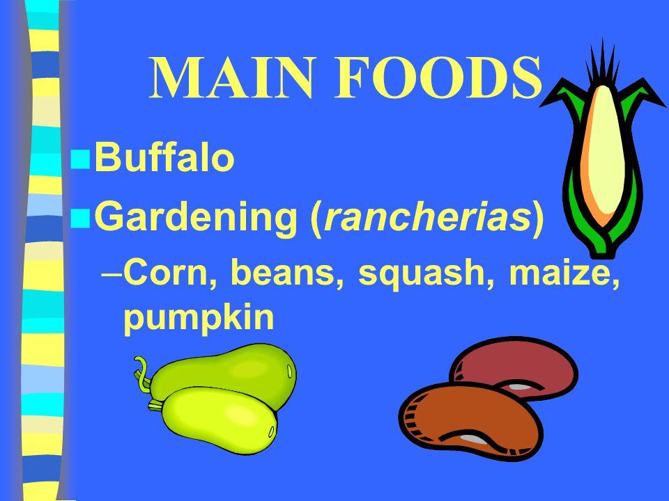 MAIN FOODS Buffalo Gardening (rancherias) –Corn, beans, squash, maize, pumpkin