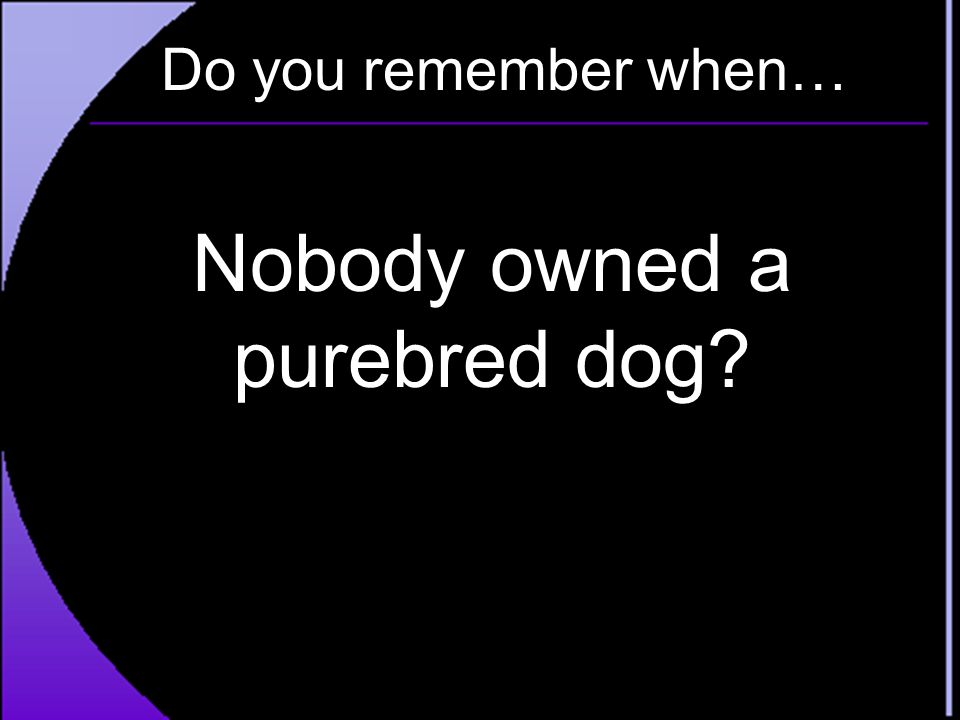 Do you remember when… Nobody owned a purebred dog?