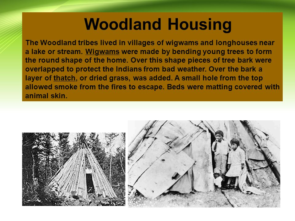 Woodland Housing The Woodland tribes lived in villages of wigwams and longhouses near a lake or stream.