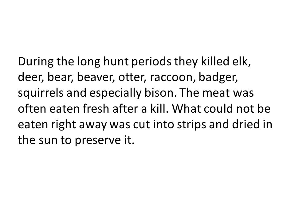During the long hunt periods they killed elk, deer, bear, beaver, otter, raccoon, badger, squirrels and especially bison. The meat was often eaten fre