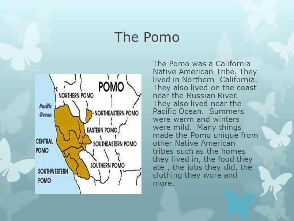 The Pomo The Pomo was a California Native American Tribe.