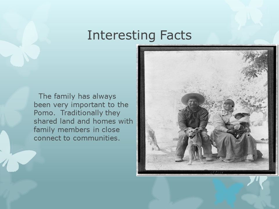 Interesting Facts The family has always been very important to the Pomo.