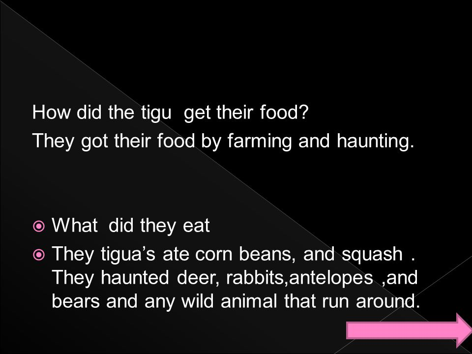 How did the tigu get their food? They got their food by farming and haunting.  What did they eat  They tigua's ate corn beans, and squash. They haun