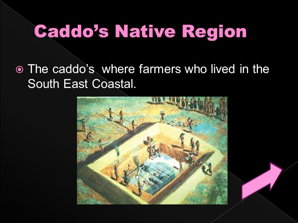  The caddo's where farmers who lived in the South East Coastal.