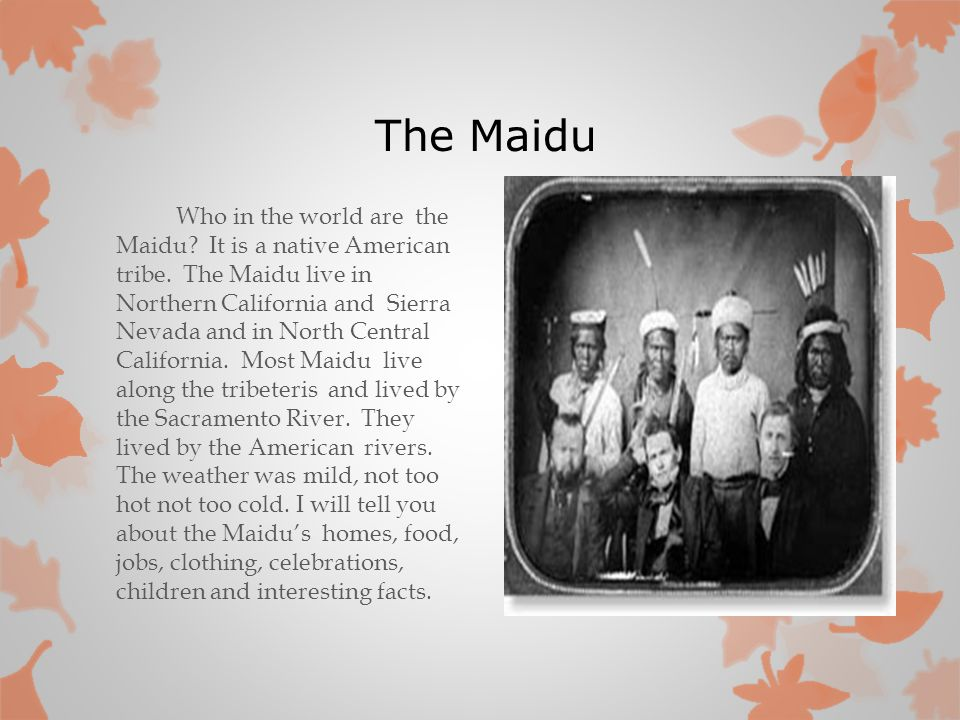 The Maidu Who in the world are the Maidu? It is a native American tribe. The Maidu live in Northern California and Sierra Nevada and in North Central