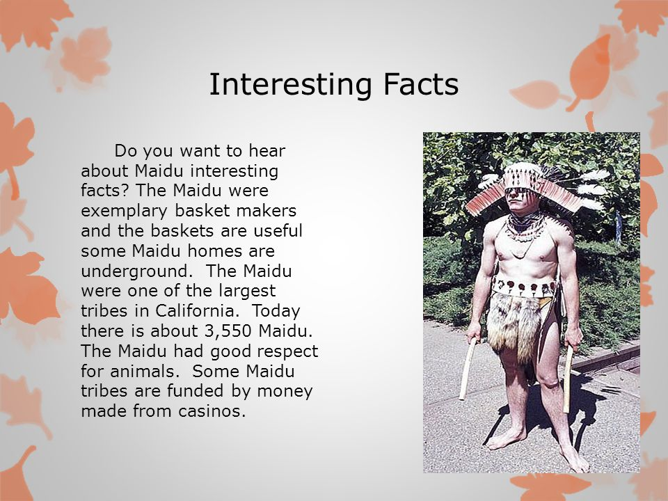 Interesting Facts Do you want to hear about Maidu interesting facts? The Maidu were exemplary basket makers and the baskets are useful some Maidu home
