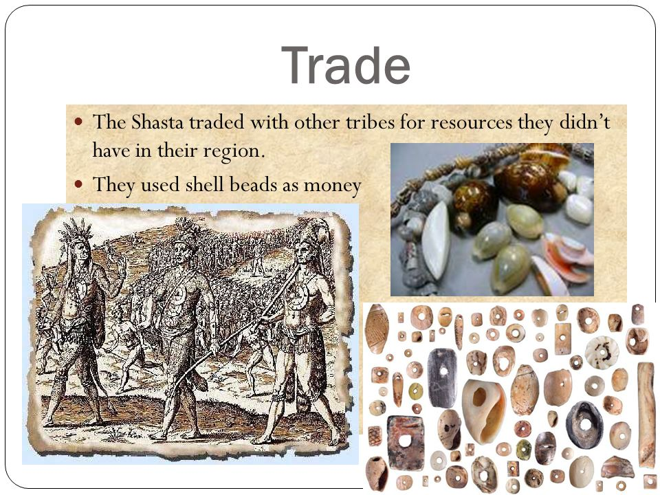 Trade The Shasta traded with other tribes for resources they didn't have in their region.