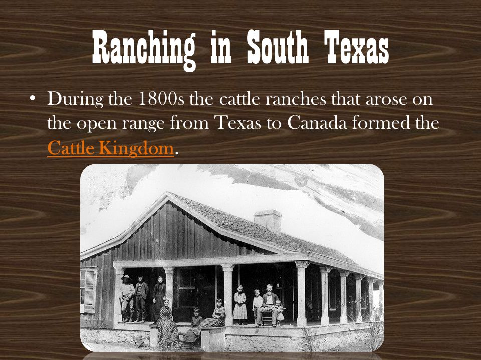 King Ranch The King ranch in south Texas was one of the most important cattle operations in the state.