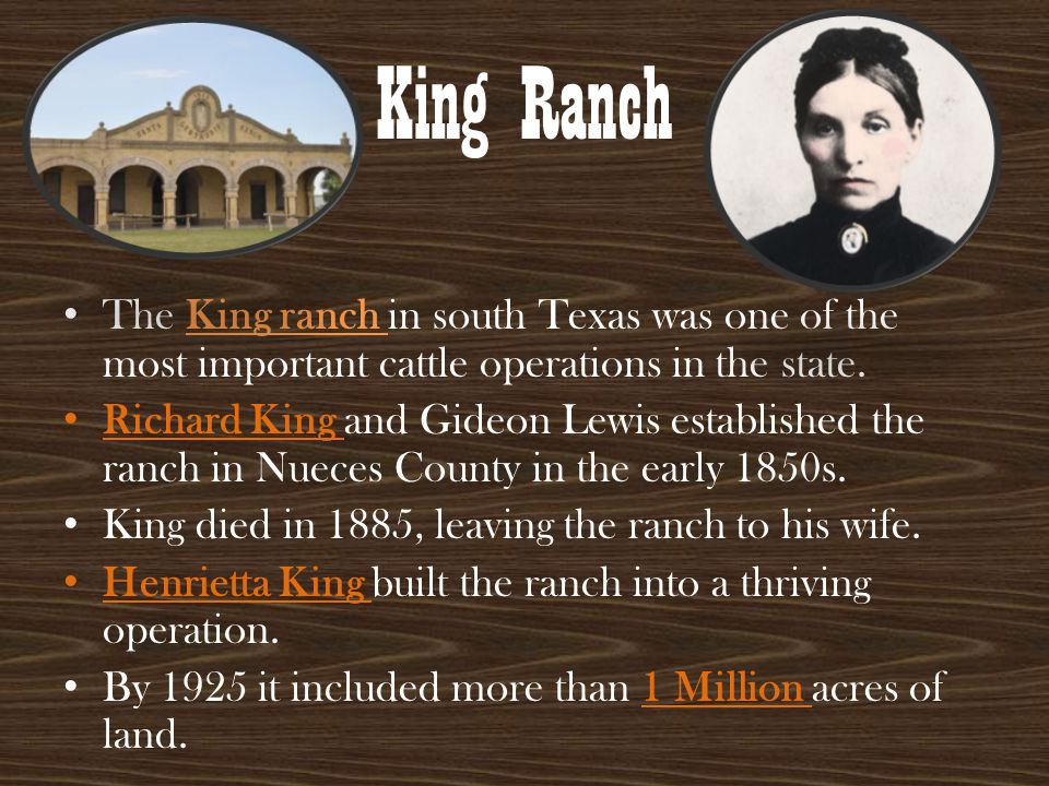 King Ranch The King ranch in south Texas was one of the most important cattle operations in the state. Richard King and Gideon Lewis established the r