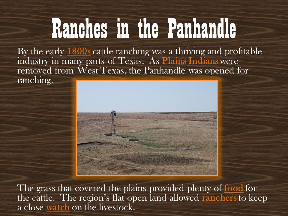 Ranches in the Panhandle By the early 1800s cattle ranching was a thriving and profitable industry in many parts of Texas. As Plains Indians were remo