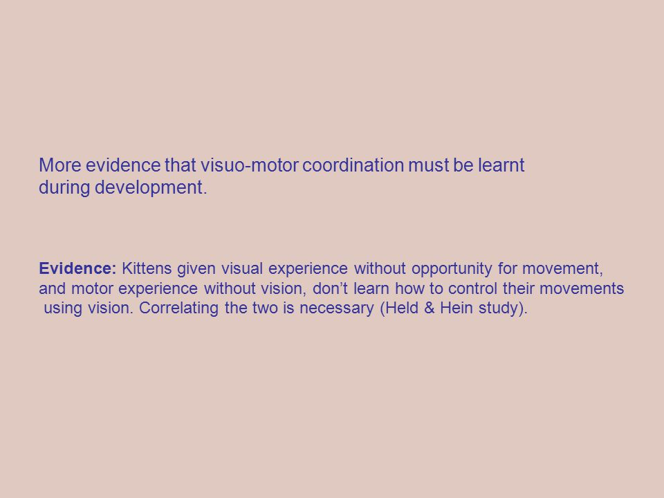 More evidence that visuo-motor coordination must be learnt during development.