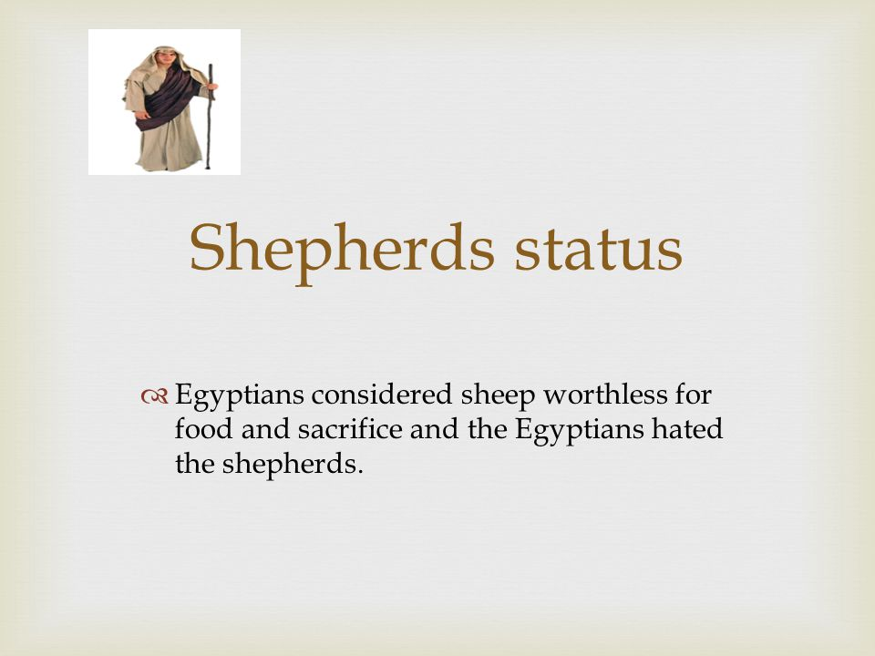 Shepherds status  Egyptians considered sheep worthless for food and sacrifice and the Egyptians hated the shepherds.