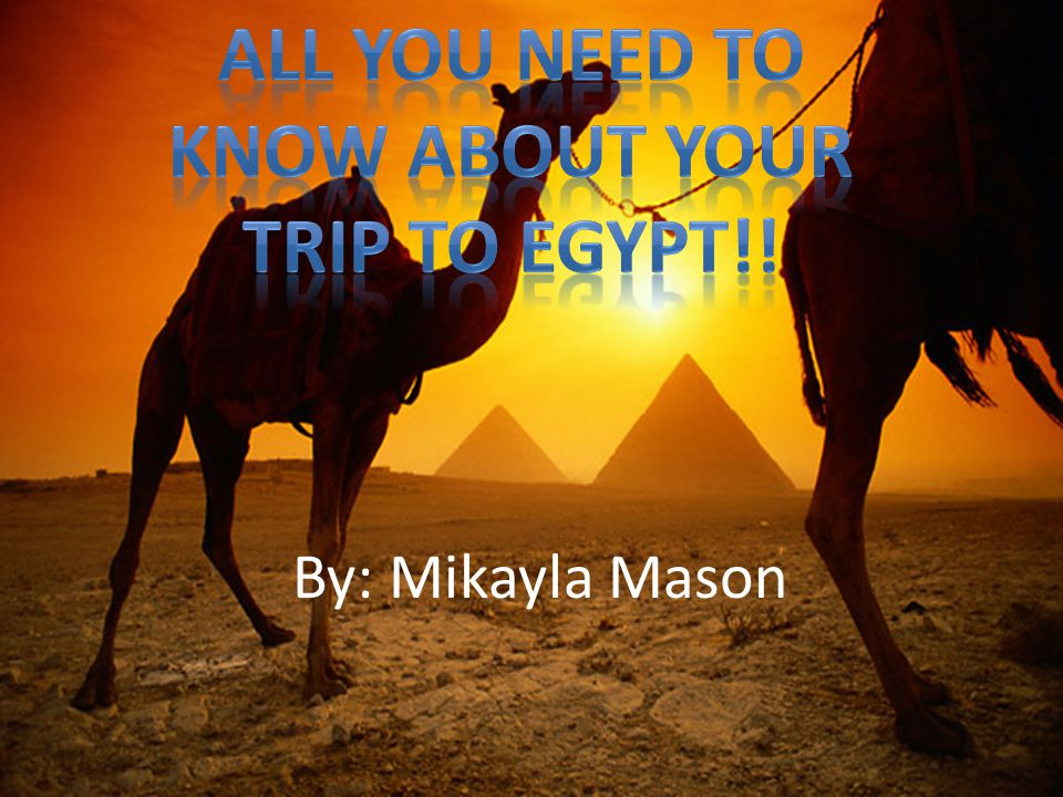 Hieroglyphics are a fascinating form of writing, and if you come to Egypt, you can discover the history and culture deeply intertwined with hieroglyphics.