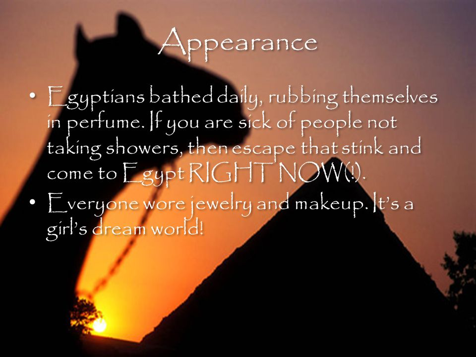 Appearance Appearance Egyptians bathed daily, rubbing themselves in perfume.