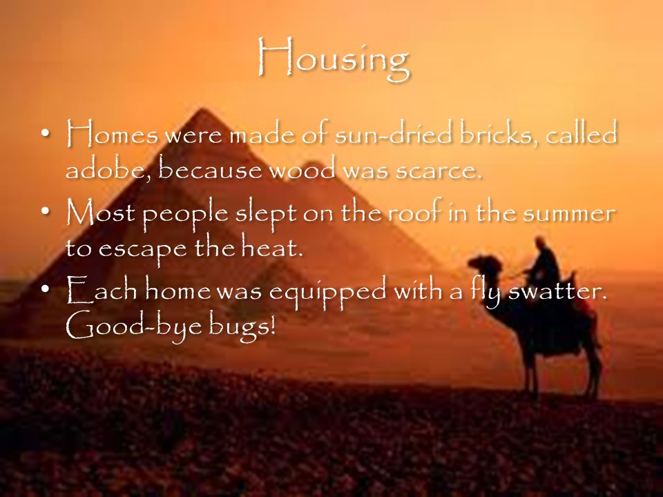 Housing Homes were made of sun-dried bricks, called adobe, because wood was scarce.
