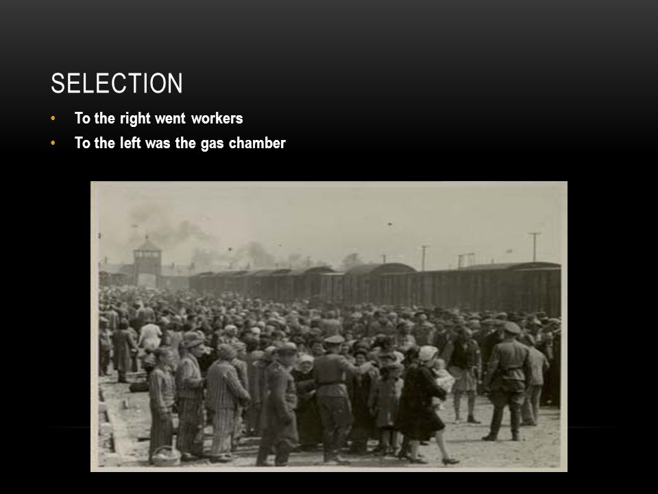 SELECTION To the right went workers To the left was the gas chamber