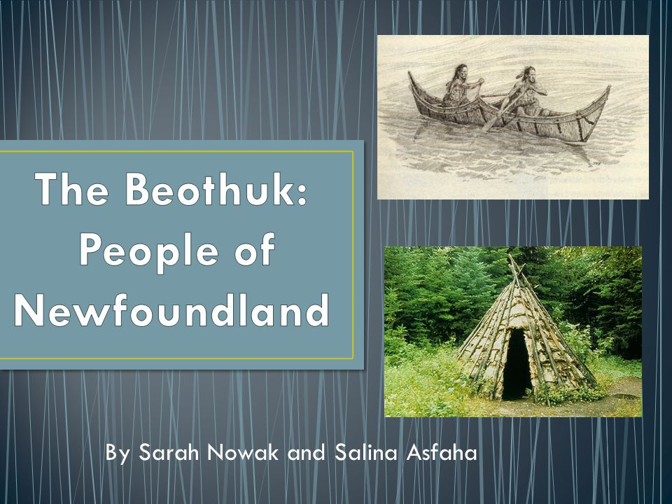 A proclamation was issued in 1769, making it a capital crime to murder any Beothuk, to protect them.