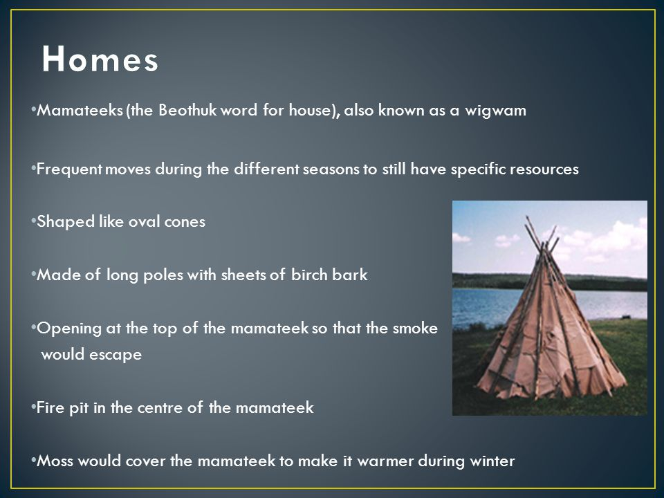 The Beothuk s were fishermen Hunters of the caribou (main Food) Lived off of the land, as did all of the other tribes
