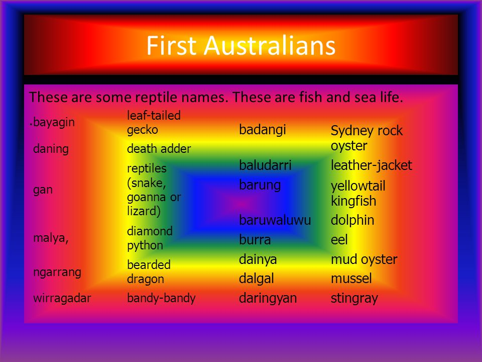 First Australians These are some reptile names. These are fish and sea life..