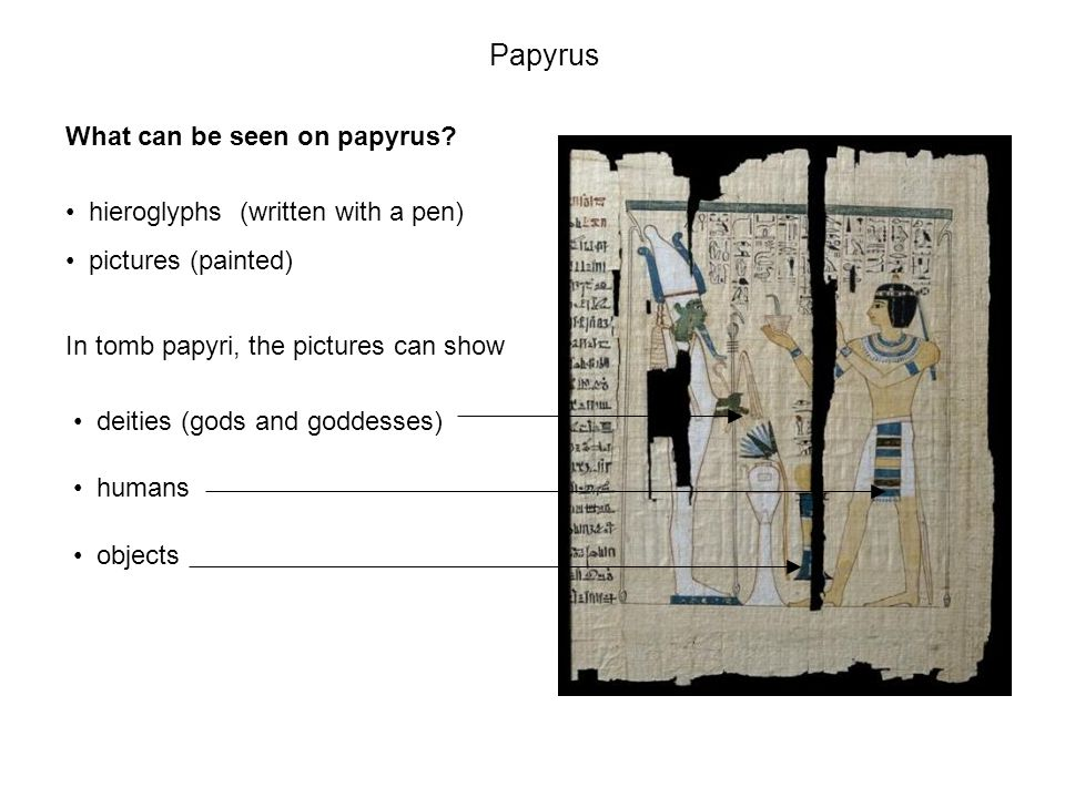 Papyrus from the Book of the Dead of Nakht.