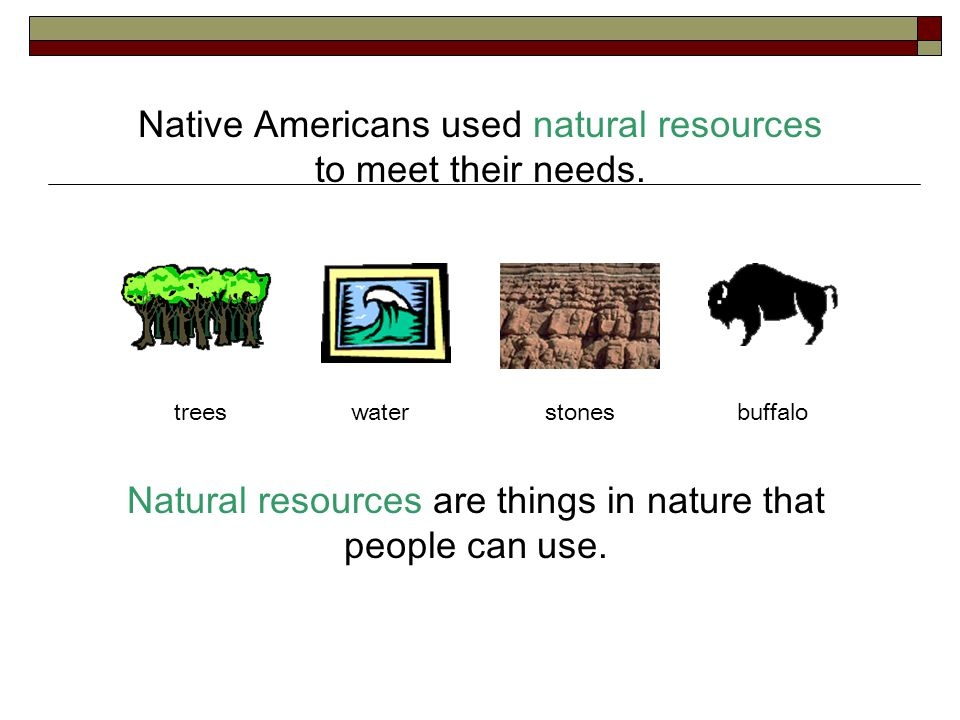 Native Americans used natural resources to meet their needs. Natural resources are things in nature that people can use. treeswaterstonesbuffalo
