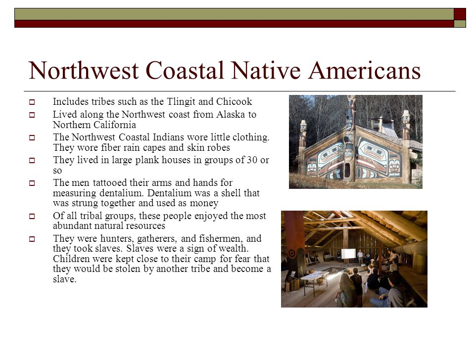 Northwest Coastal Native Americans  Includes tribes such as the Tlingit and Chicook  Lived along the Northwest coast from Alaska to Northern Califor