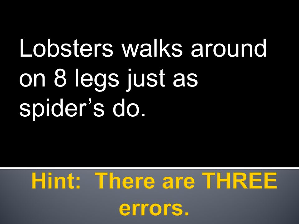 Lobsters walks around on 8 legs just as spider's do.