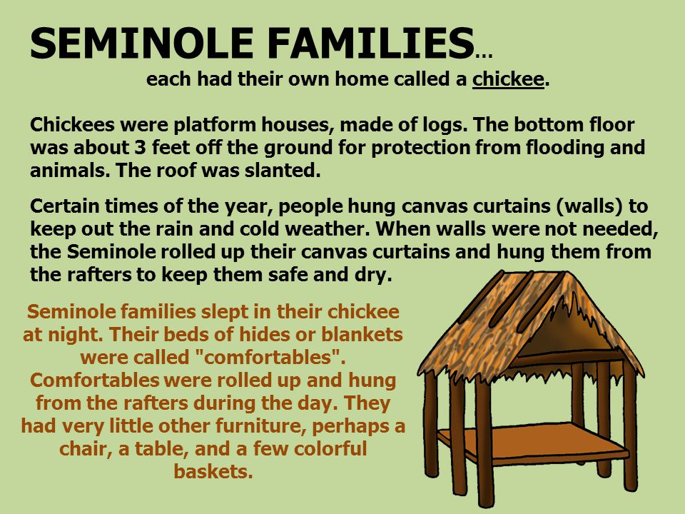 SEMINOLE FAMILIES … each had their own home called a chickee. Chickees were platform houses, made of logs. The bottom floor was about 3 feet off the g