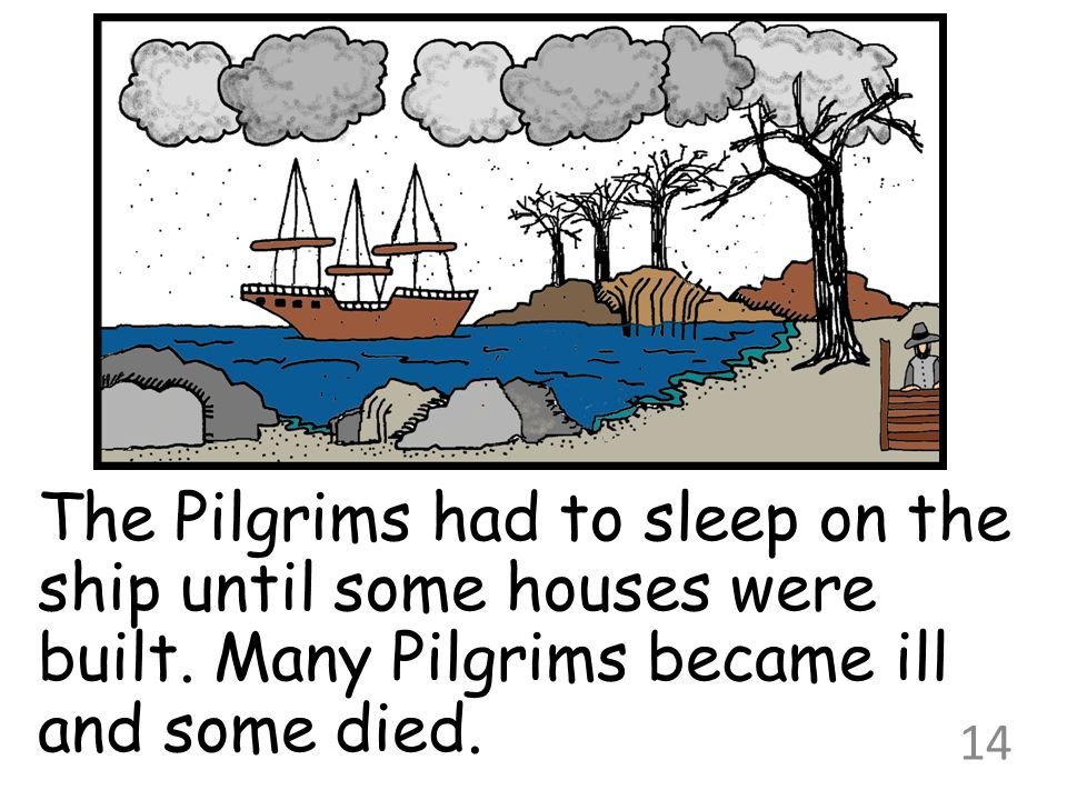 The Pilgrims had to sleep on the ship until some houses were built. Many Pilgrims became ill and some died. 14