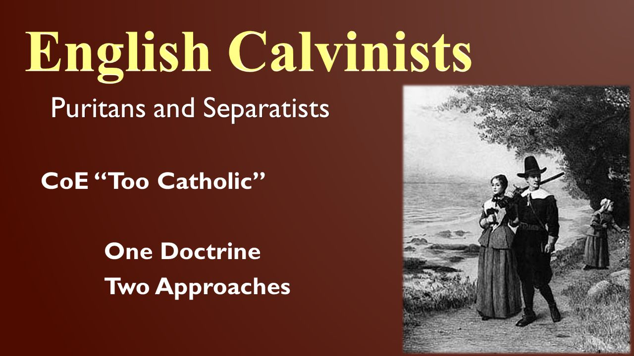 Puritans and Separatists CoE Too Catholic One Doctrine Two Approaches