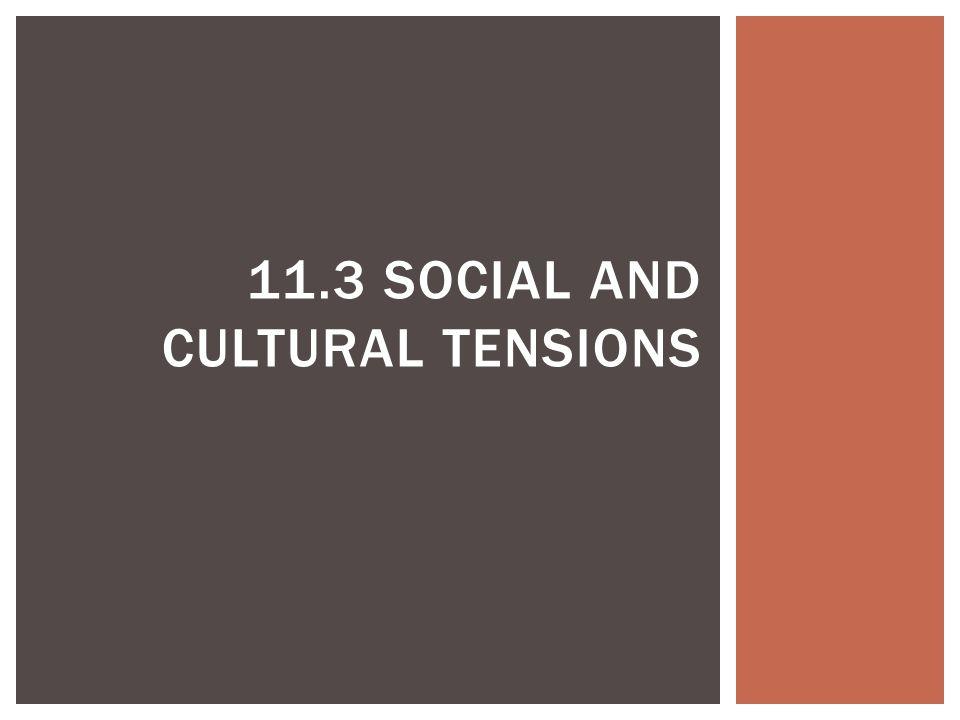 11.3 SOCIAL AND CULTURAL TENSIONS