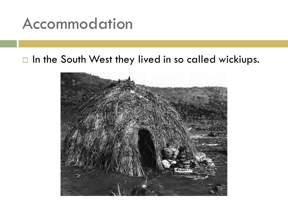 Accommodation  In the South West they lived in so called wickiups.
