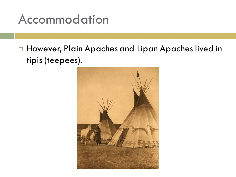Accommodation  However, Plain Apaches and Lipan Apaches lived in tipis (teepees).