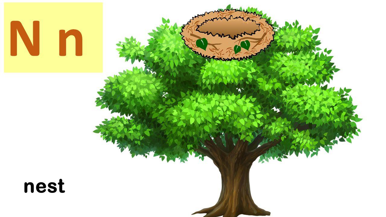 N n Nine nuts