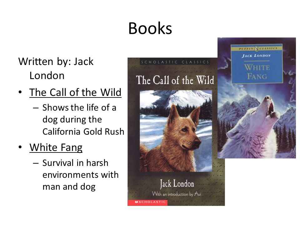 Books Written by: Jack London The Call of the Wild – Shows the life of a dog during the California Gold Rush White Fang – Survival in harsh environments with man and dog