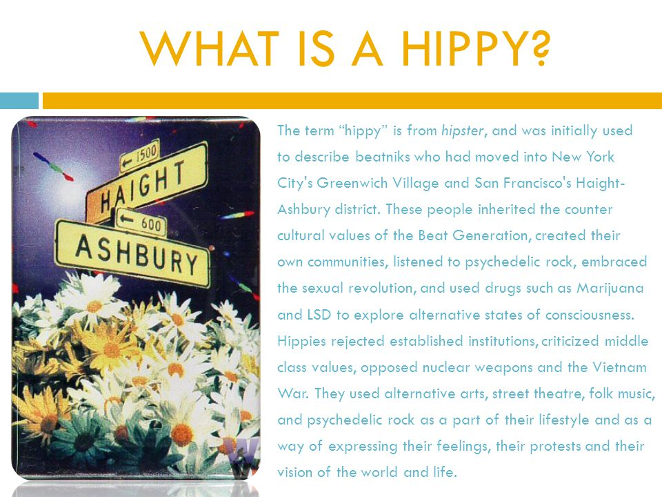 WHAT IS A HIPPY.