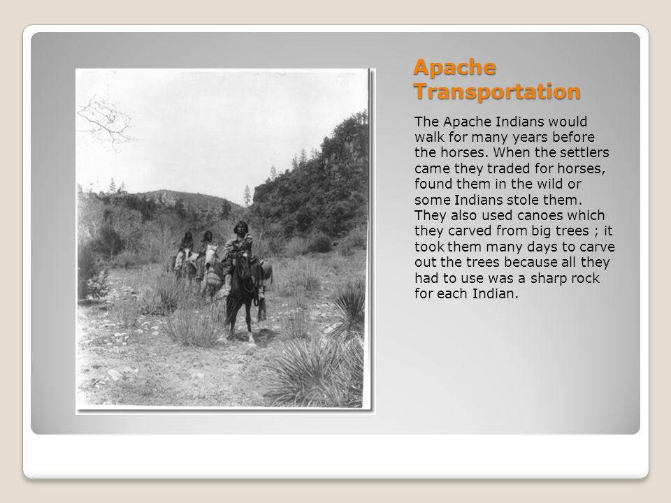 Apache Transportation The Apache Indians would walk for many years before the horses. When the settlers came they traded for horses, found them in the