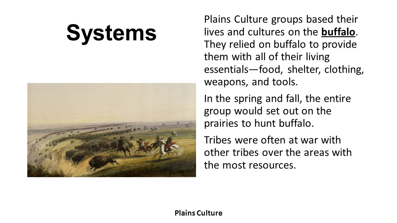Environment Most Plains Culture groups called the Great Plains their home, although some tribes lived in other regions of Texas.