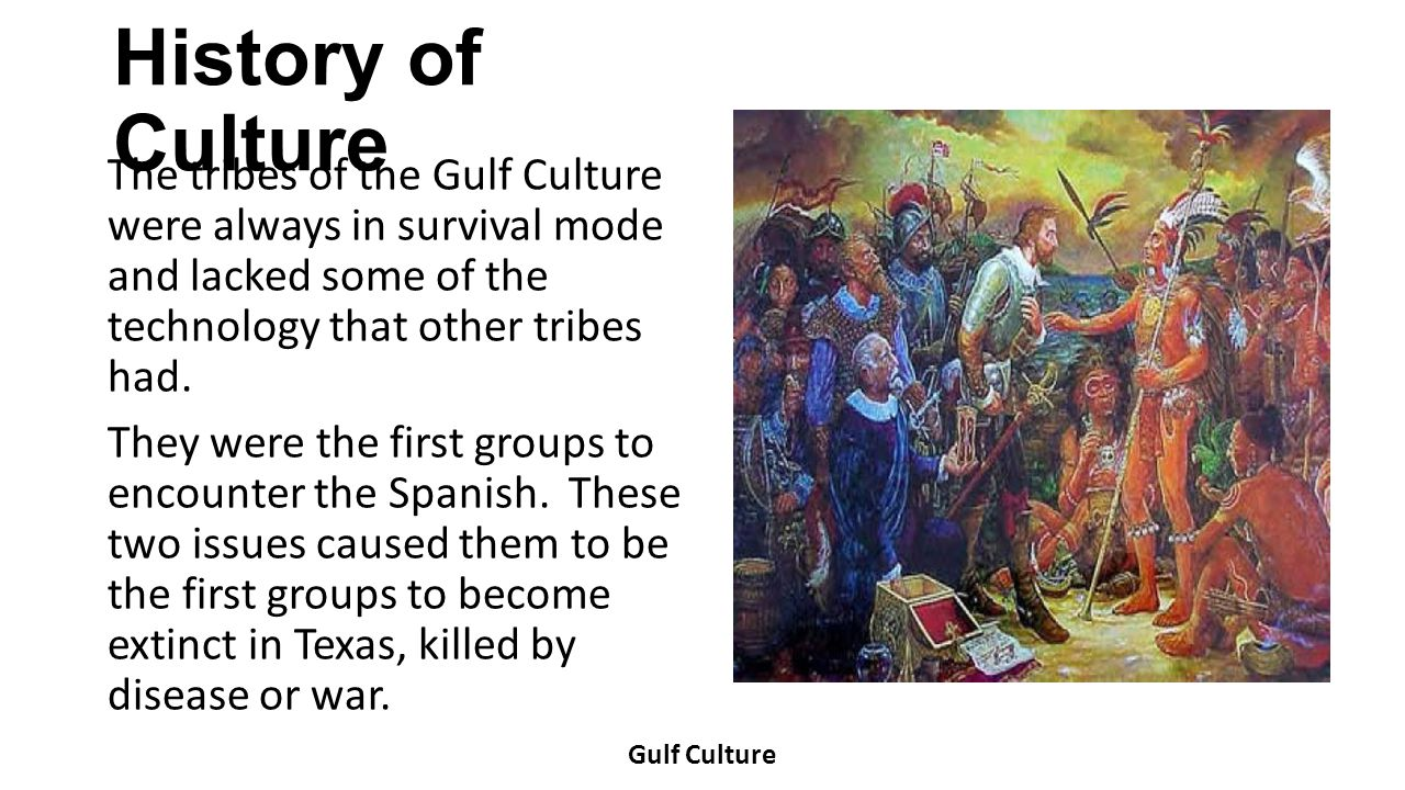 History of Culture The tribes of the Gulf Culture were always in survival mode and lacked some of the technology that other tribes had. They were the