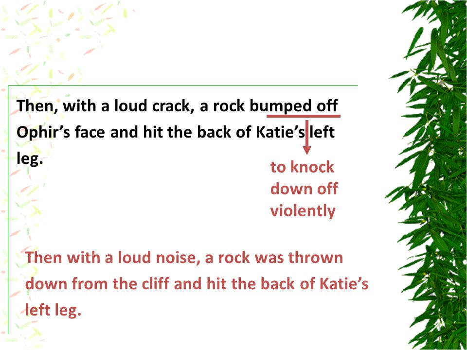 Then, with a loud crack, a rock bumped off Ophir's face and hit the back of Katie's left leg.