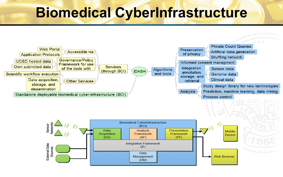 Biomedical CyberInfrastructure