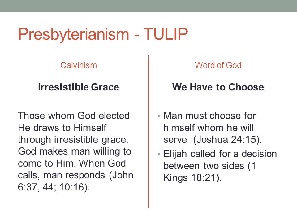 Presbyterianism - TULIP Calvinism Irresistible Grace Those whom God elected He draws to Himself through irresistible grace. God makes man willing to c