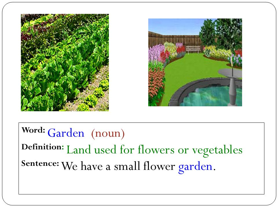 Word: Garden (noun) Definition: Land used for flowers or vegetables Sentence: We have a small flower garden.
