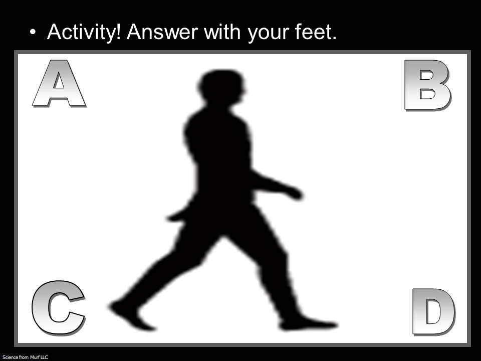 Activity! Answer with your feet.